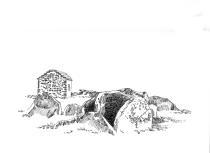 203 Cap Sizun – Menez Dregan – Plouhinec