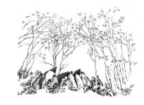 223 Cap Sizun – Allée couverte de Lesconil – Poullan sur Mer