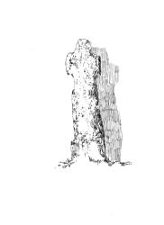 294 Cap – Croix monolithe – Plozevet