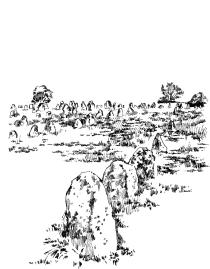 411 Carnac Alignements 2 – Morbilhan