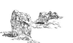 505 Alignements des Demoiselles – Ille et Vilaine