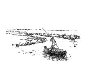 507 Loire atlantique – Paysage en Briere – St Lyphard