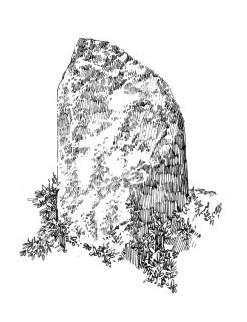 676 Finistère – Menhir de Créac'h Edern – Plouigneau