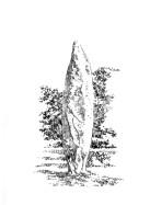 793 Menhir de la Roche Longue – Quintin – Côtes d'Armor