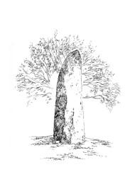 833 Menhir de Glomel – Côtes d'Armor