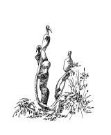 871 Sculpture – Vallée des arts – Cavan – Côtes d'armor