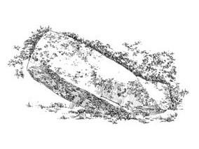 974 Finistère – Menhir du Moulin de Keriolet – Beuzec