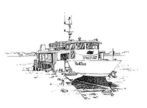 1021 Morbihan – Arz – Bateau bus