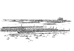 1050 Morbihan – Arz – Parc à huîtres