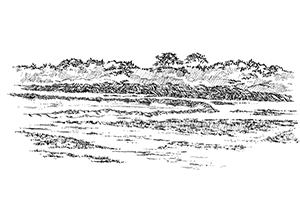 1057 Morbihan – Arz – Marais salants