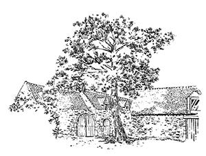 1066 Morbihan – Arz – Manoir de Billiherve