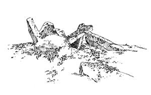 1067 Morbihan – Arz – Dolmen Liouse