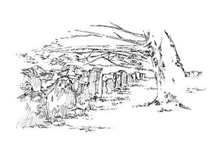 954 Enclos druidique – Begnivot Beuzec – Finistère
