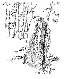 312 Menhir de Bizied Karotez Pouldreuzic – Finister