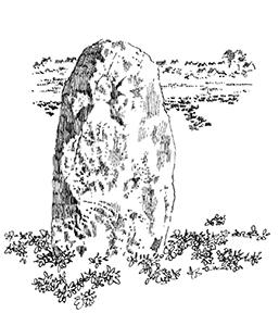 313 Menhir de Kervinou – Pouldreuzic – Finistere