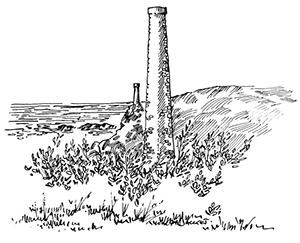 050 Amer de Theolen – Cleden – Finistère